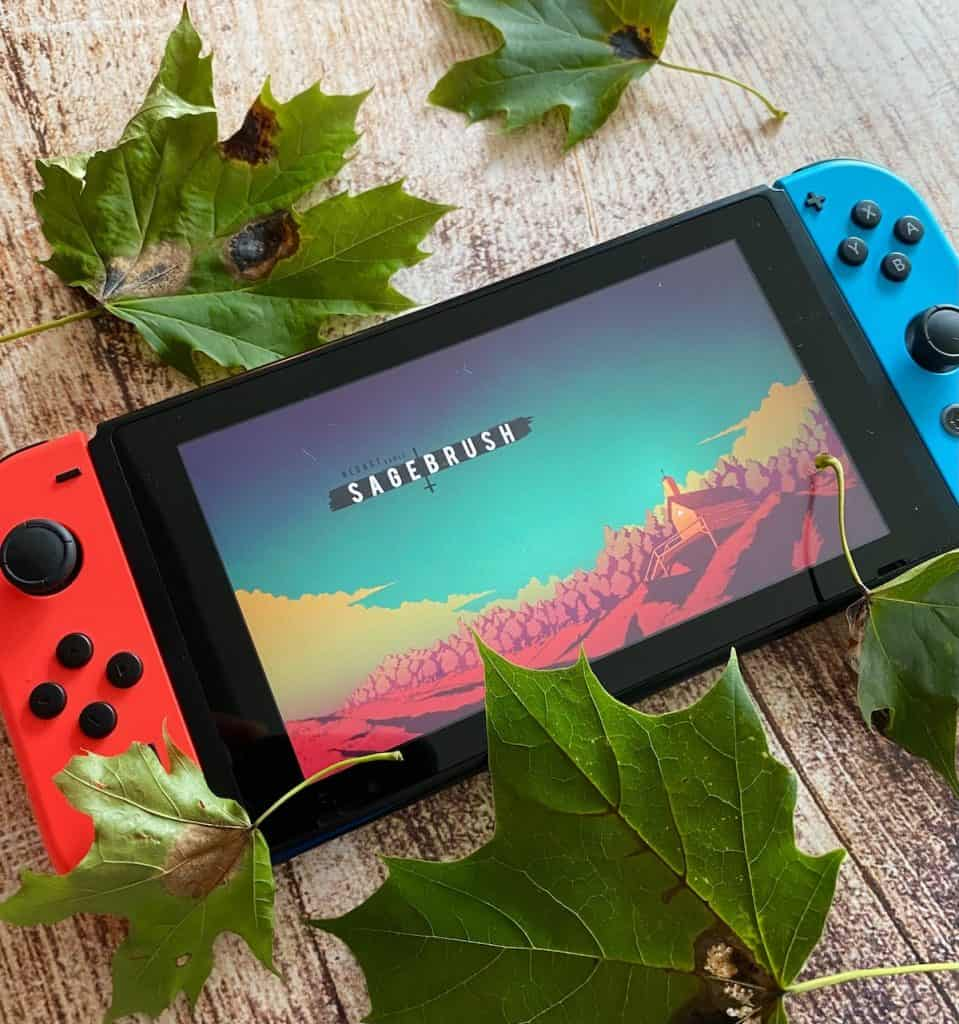 Sagebrush playing on Switch with leaves around it